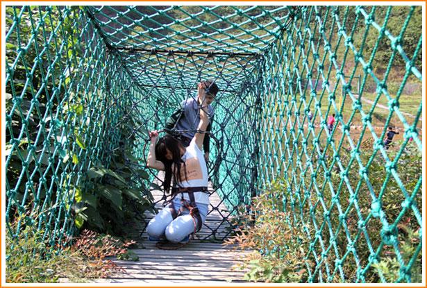 乐园位于国家aaaa级紫蓬山自然生态风景区,让游客在青山古树中返璞归