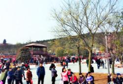 15万游客涌入紫蓬山庙会,笑翻天乐园游客如织